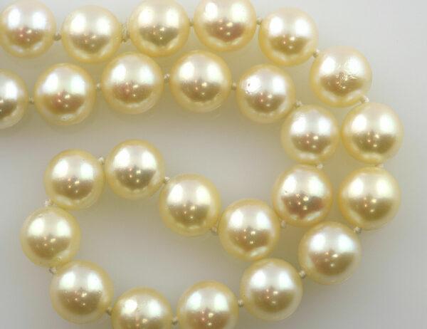 Akoyaperlenkette 8,30 mm, 49 cm, 585/000 14 K Weißgoldschließe